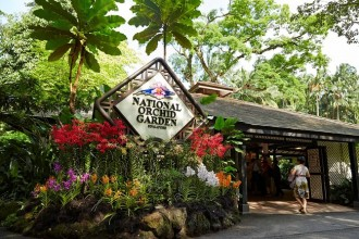 National Orchid Garden Admission Ticket