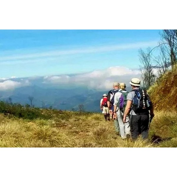 Meesapulimalai Trekking 'the second highest peak in South India' - Private Tour-1