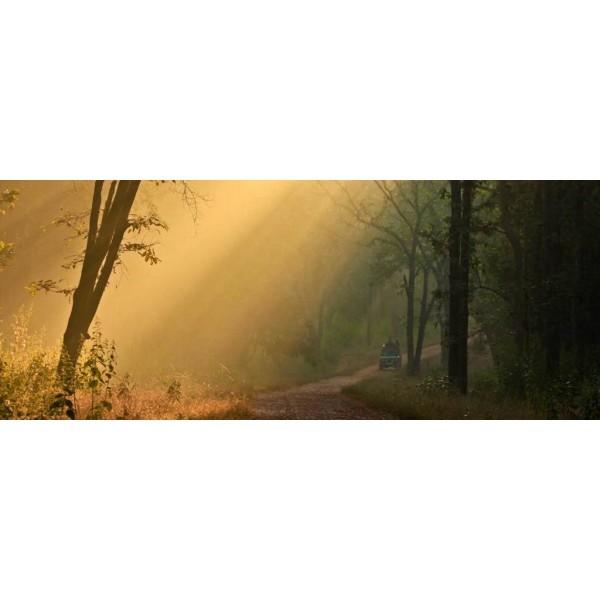 UTTARAKHAND PACKAGE (8 Nights /9 Days)-1