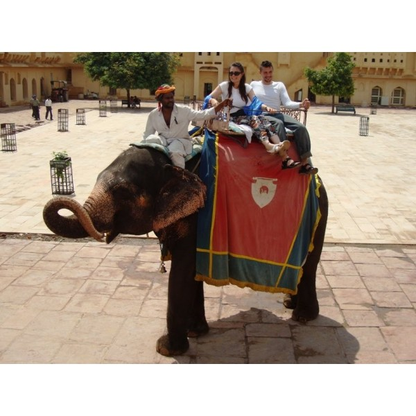 Amer Fort Elephant Ride 3-Hour Tour in Jaipur-1